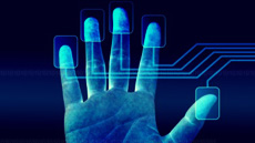 Nets experiments with finger payments at Idea Lab