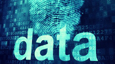 data with digital fingerprints