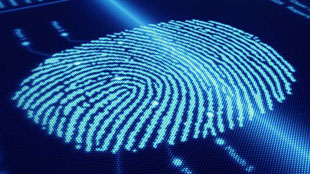 BofA partners Intel for online banking fingerprint authentication