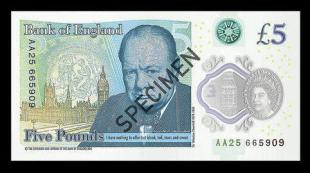 newfiver