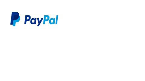 PayPal strikes deals with Chase and Citi